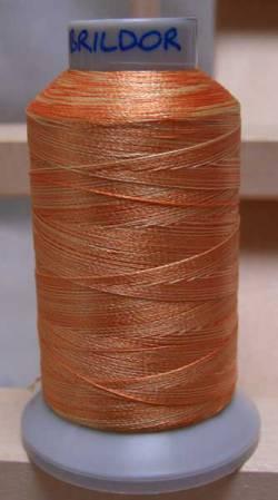 BRILDOR PB40 Polyestergarn multicolor 2861